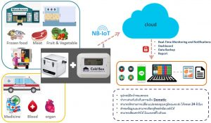 Solution Cold condition monitoring for good health