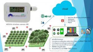 ประยุกต์ใช้ IoT กับป่าไม้ เพื่อติดตามระดับ CO2 อุณหภูมิ และความชื้น